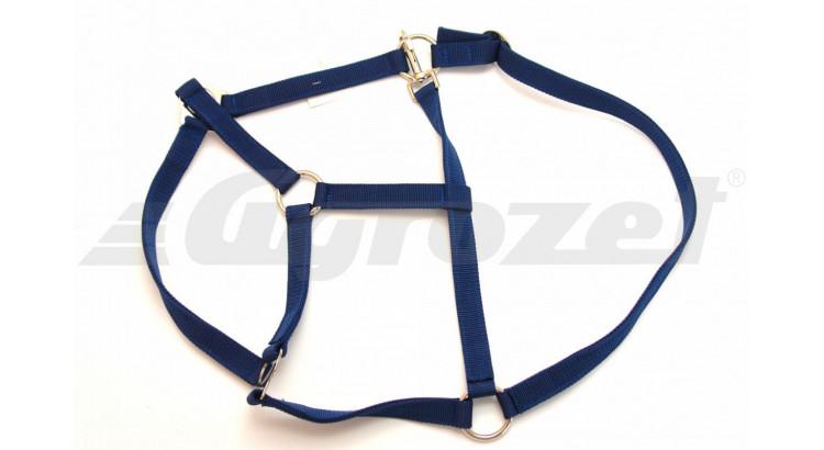 Ohlávka nylonová CLASSIC modrá vel. 4