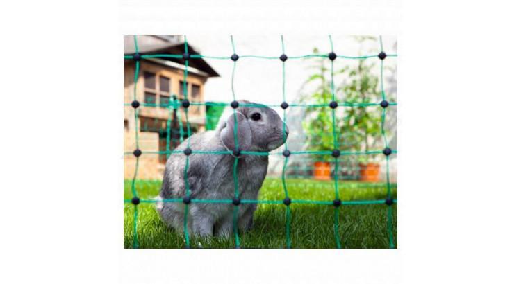 Ohrada pro králíky - síť 65cm/50m