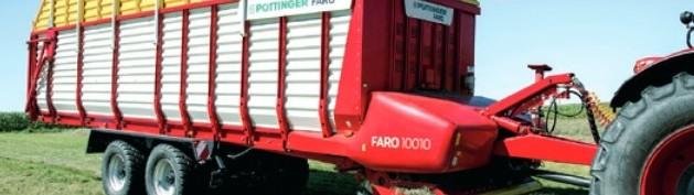 Faro_10010